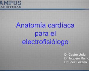 Anatomía cardíaca